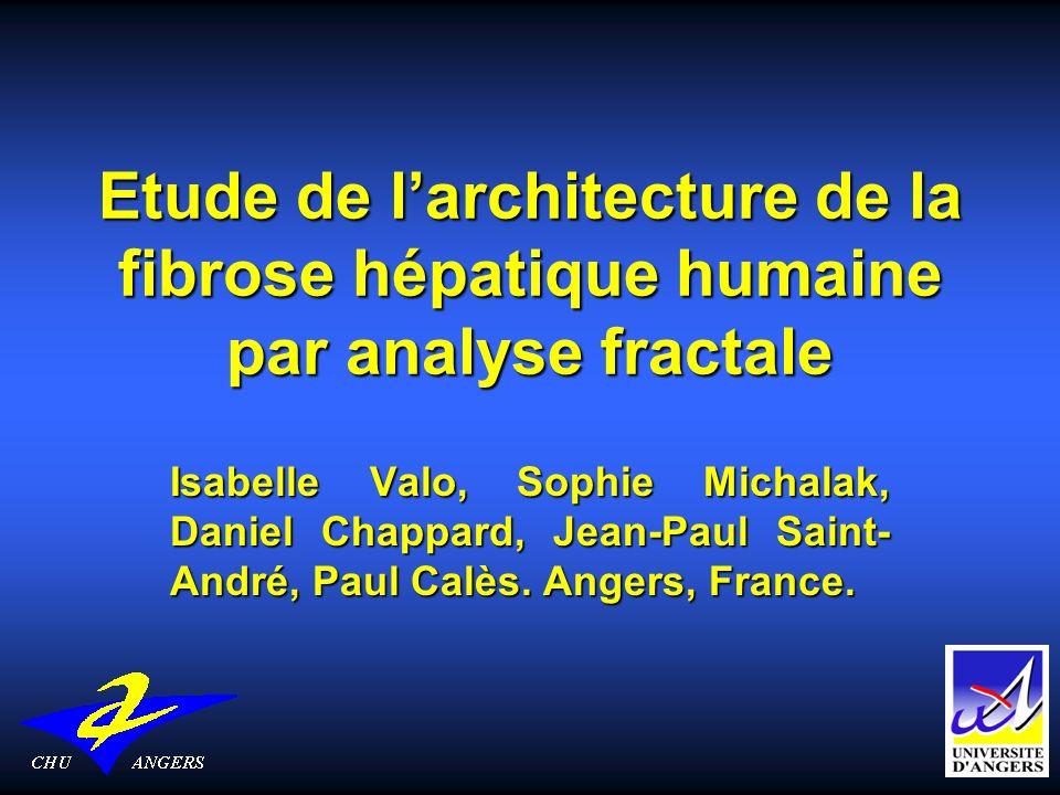 Etude de larchitecture de la fibrose hépatique humaine par analyse fractale Isabelle Valo, Sophie Michalak, Daniel Chappard, Jean-Paul Saint- André, P
