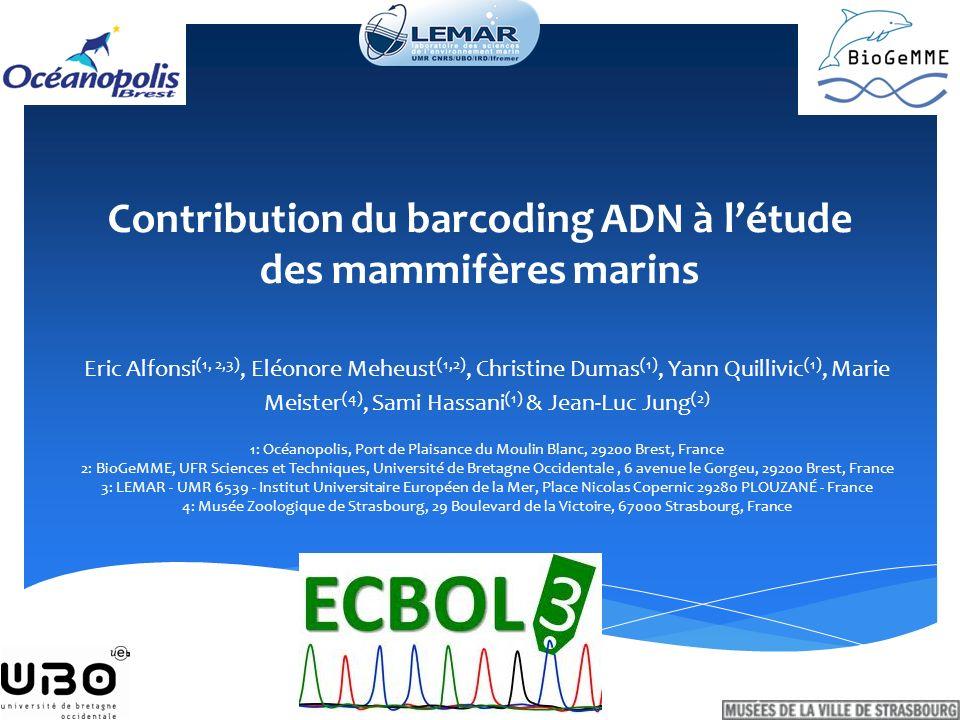 Contribution du barcoding ADN à létude des mammifères marins Eric Alfonsi (1, 2,3), Eléonore Meheust (1,2), Christine Dumas (1), Yann Quillivic (1), M