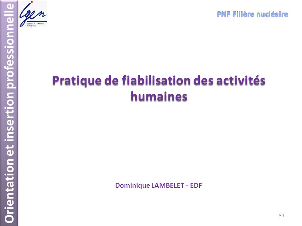 Orientation et insertion professionnelle Pratique de fiabilisation des activités humaines Dominique LAMBELET - EDF 59