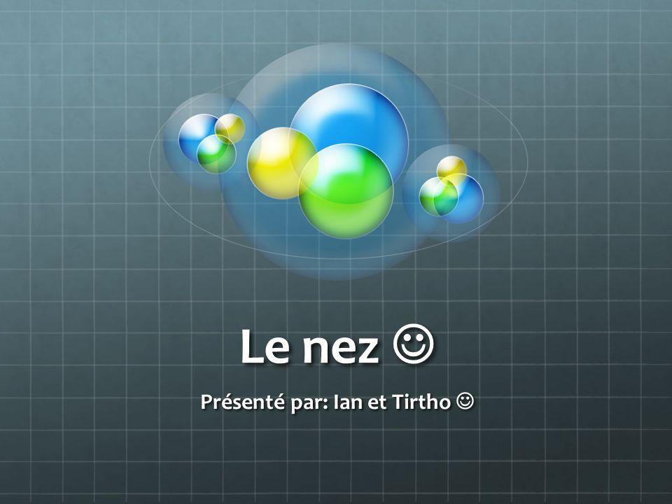 Le nez Le nez Présenté par: Ian et Tirtho Présenté par: Ian et Tirtho