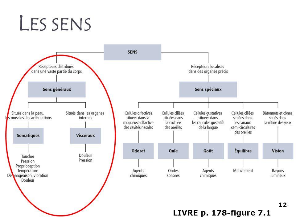 L ES SENS LIVRE p. 178-figure 7.1 12