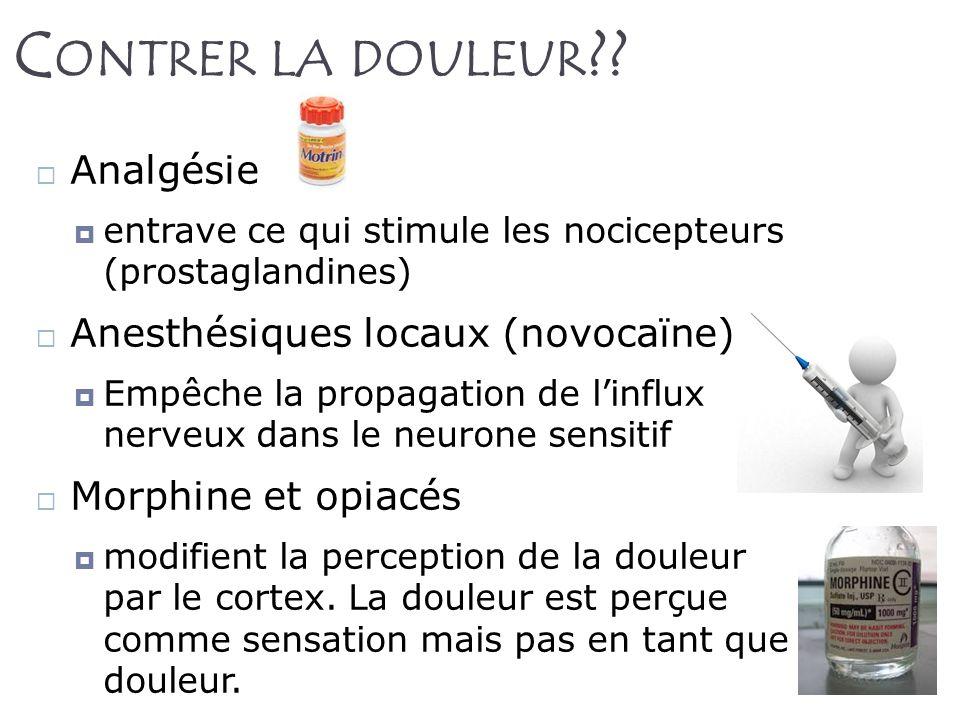22 C ONTRER LA DOULEUR ?? Analgésie entrave ce qui stimule les nocicepteurs (prostaglandines) Anesthésiques locaux (novocaïne) Empêche la propagation