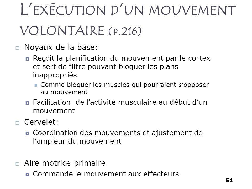 51 L EXÉCUTION D UN MOUVEMENT VOLONTAIRE ( P.216) Noyaux de la base: Reçoit la planification du mouvement par le cortex et sert de filtre pouvant bloq