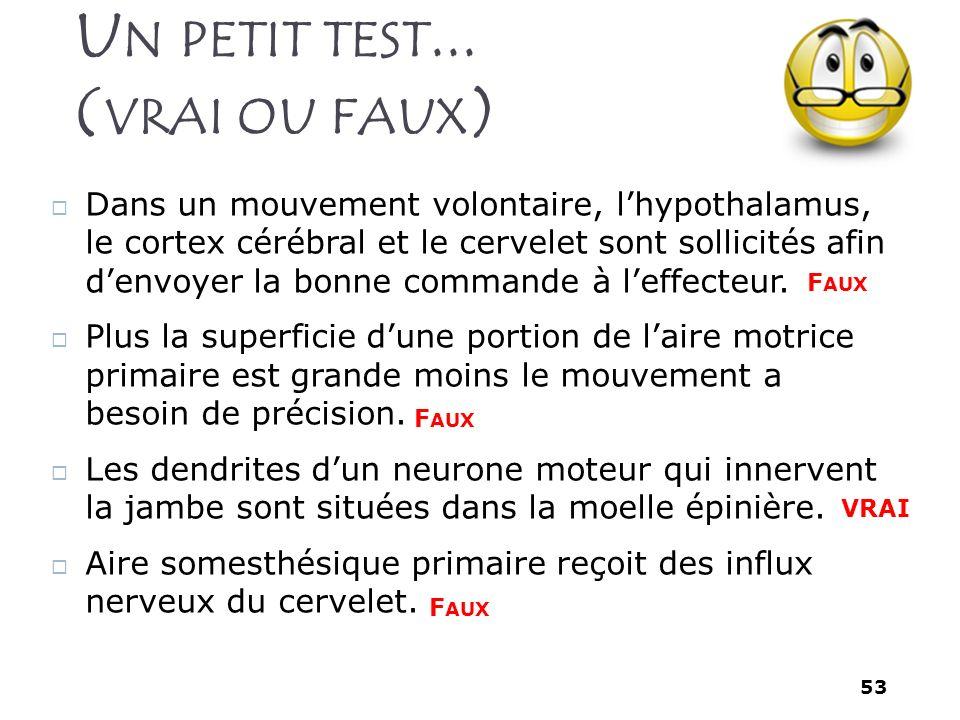 53 U N PETIT TEST... ( VRAI OU FAUX ) Dans un mouvement volontaire, lhypothalamus, le cortex cérébral et le cervelet sont sollicités afin denvoyer la