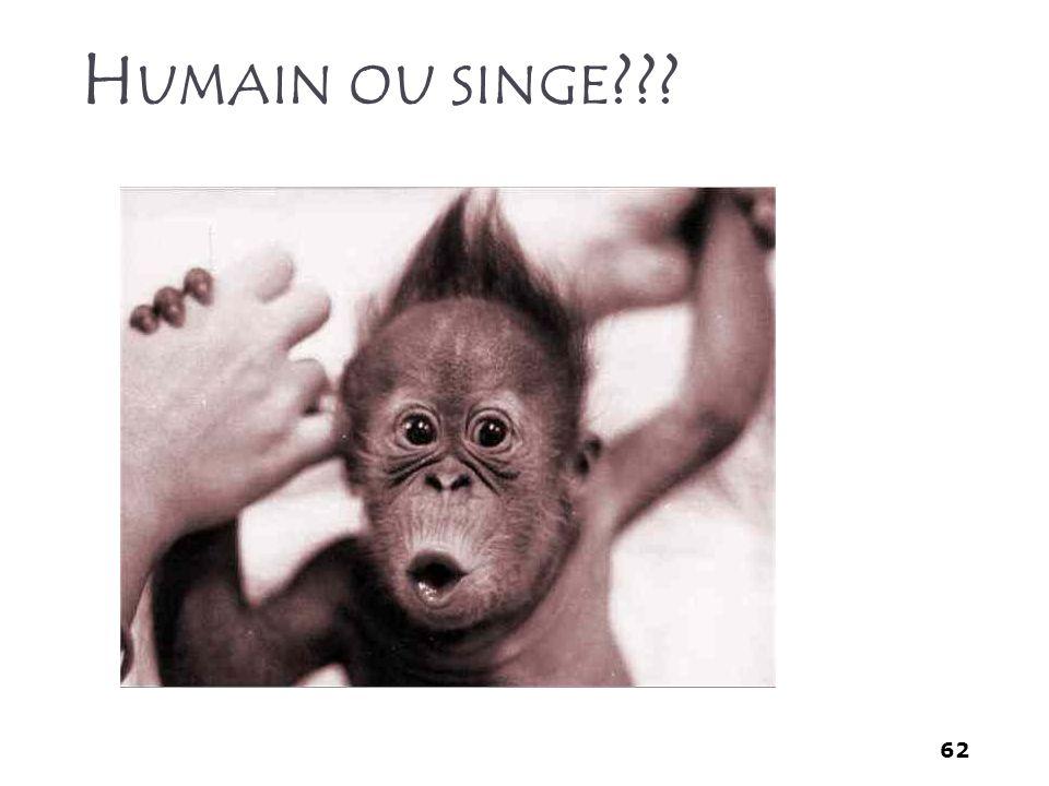 62 H UMAIN OU SINGE ???