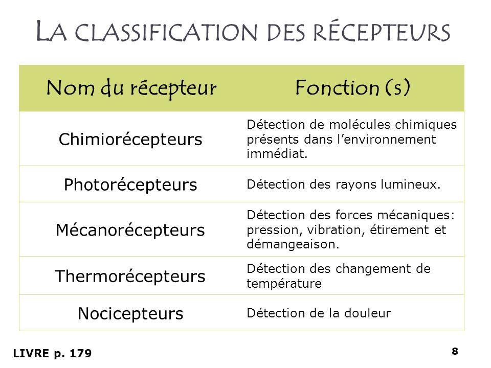 L A CLASSIFICATION DES RÉCEPTEURS Nom du récepteurFonction (s) Chimiorécepteurs Détection de molécules chimiques présents dans lenvironnement immédiat
