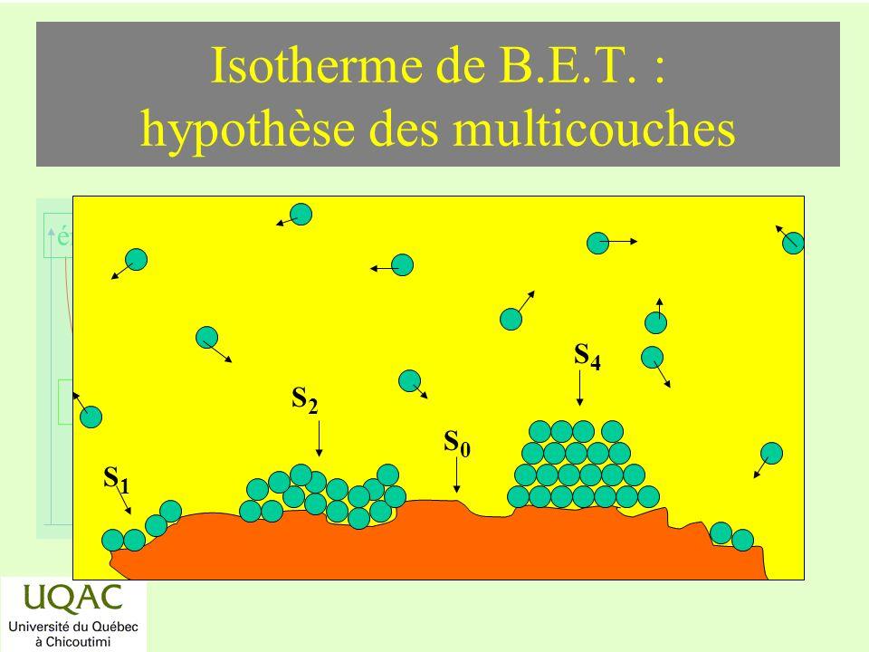 réactifs produits énergie temps Isotherme de B.E.T. : hypothèse des multicouches S0S0 S1S1 S2S2 S4S4