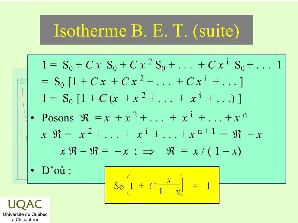 réactifs produits énergie temps 1 = S 0 + C x S 0 + C x 2 S 0 +... + C x i S 0 +... 1 = S 0 [1 + C x + C x 2 +... + C x i +... ] 1 = S 0 [1 + C (x + x