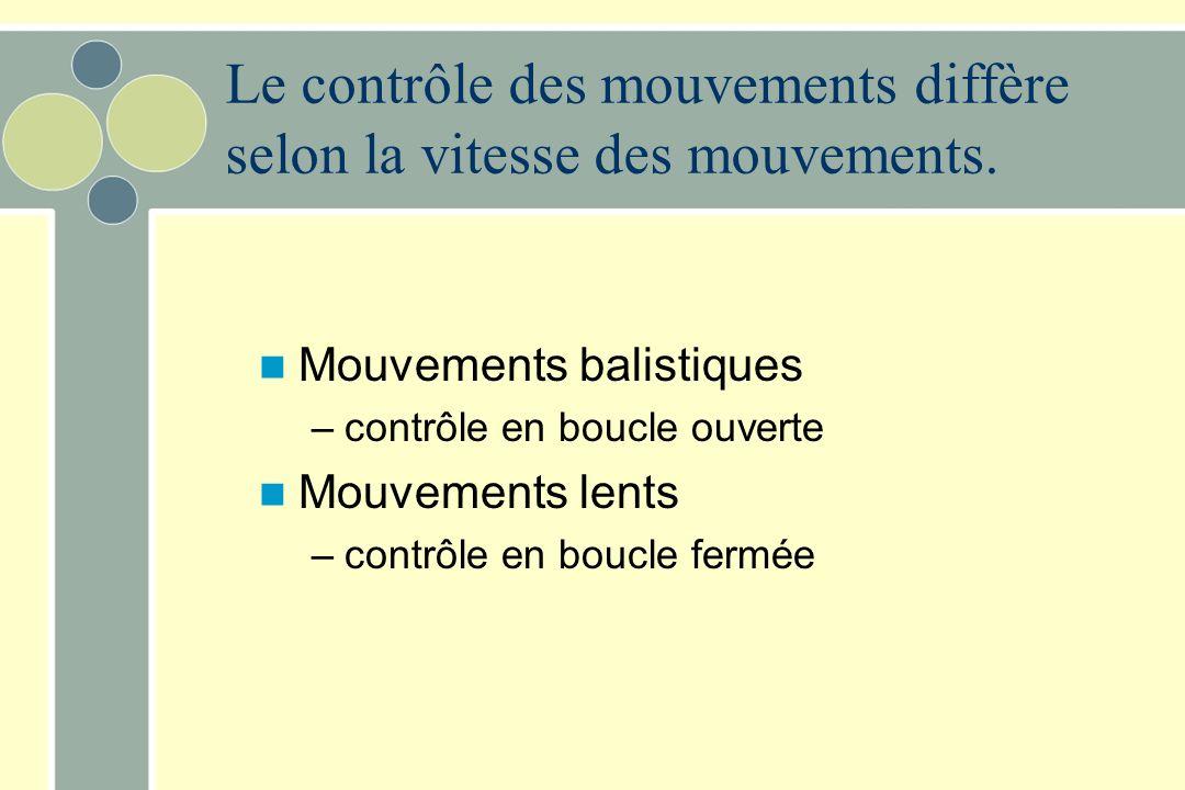 Le contrôle des mouvements diffère selon la vitesse des mouvements.