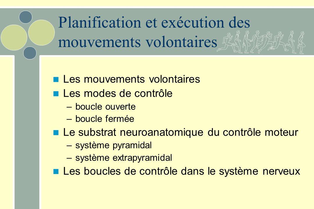 Les mouvements volontaires Les modes de contrôle –boucle ouverte –boucle fermée Le substrat neuroanatomique du contrôle moteur –système pyramidal –sys