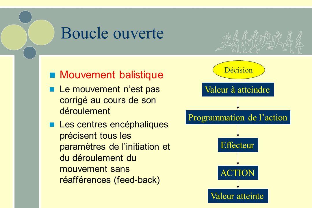 Décision Valeur à atteindre Programmation de laction Effecteur ACTION Valeur atteinte Boucle ouverte Mouvement balistique Le mouvement nest pas corrig