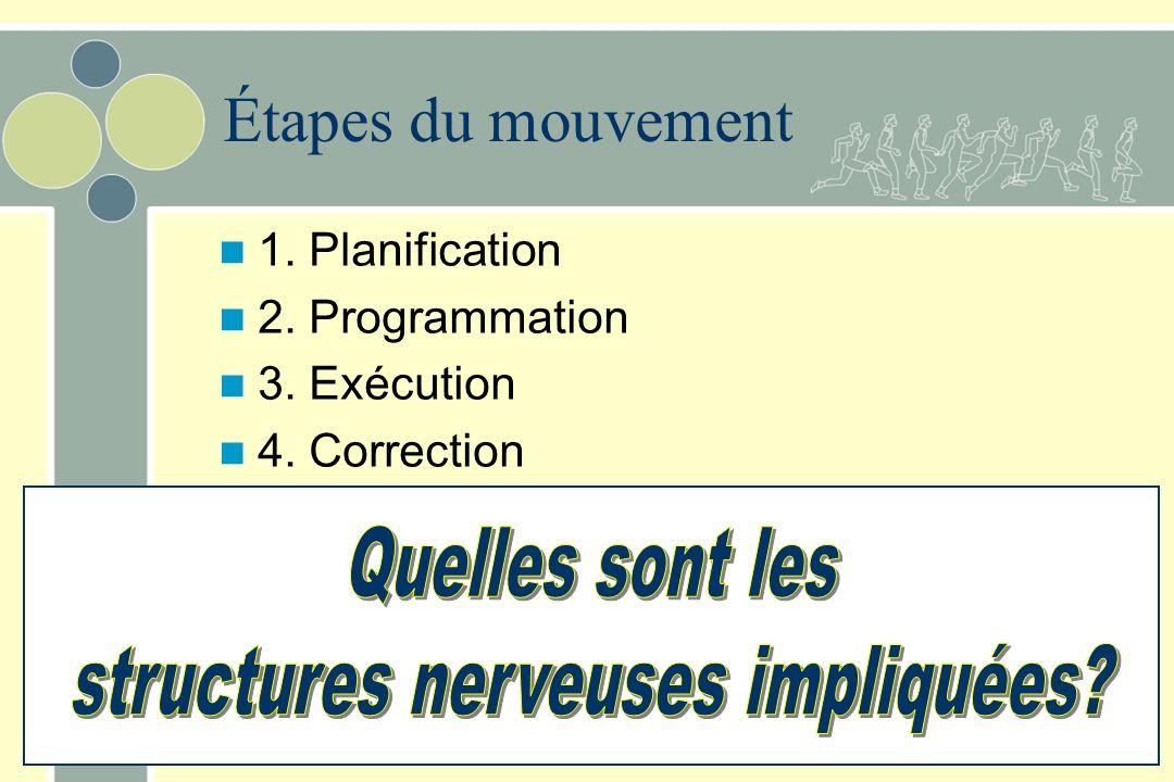 Étapes du mouvement 1. Planification 2. Programmation 3. Exécution 4. Correction