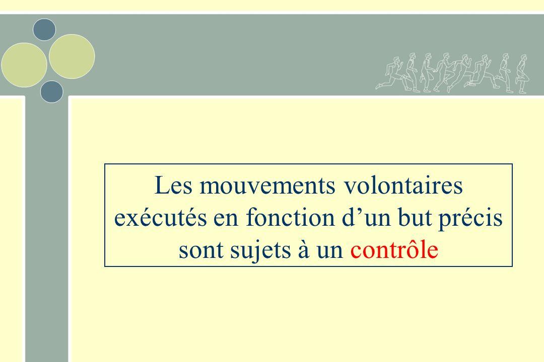 Les mouvements volontaires exécutés en fonction dun but précis sont sujets à un contrôle