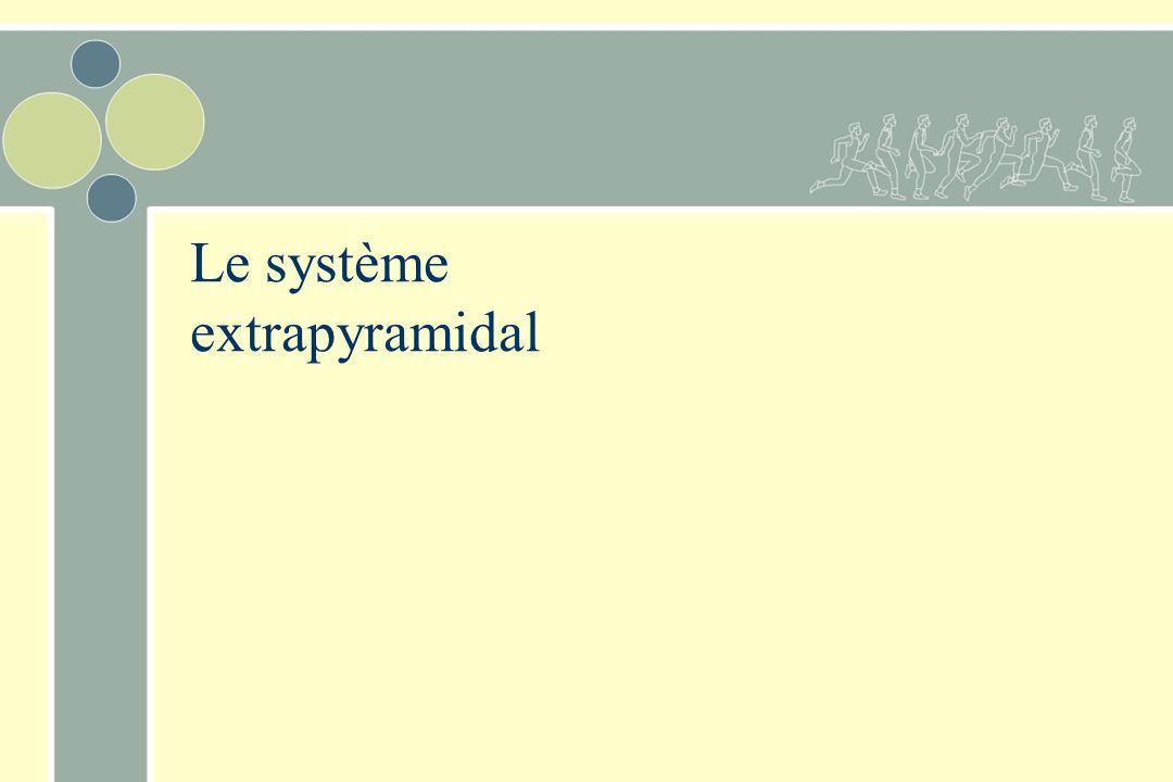 Le système extrapyramidal