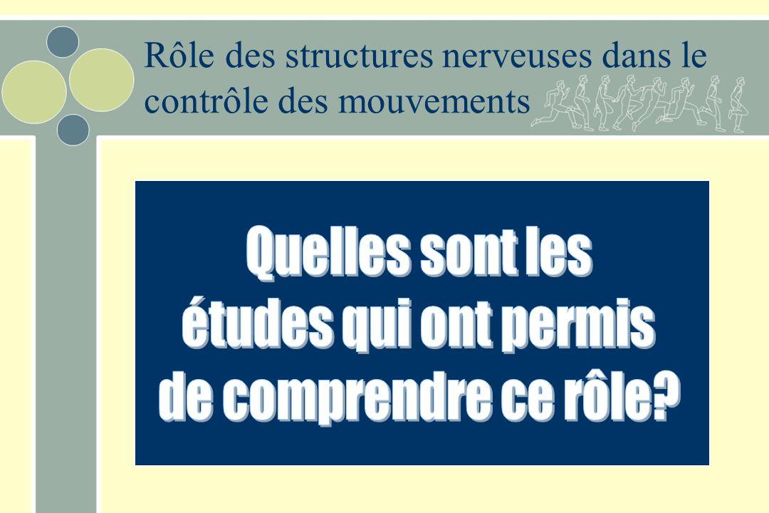 Étapes du mouvement 1.Planification aires corticales associatives 2.