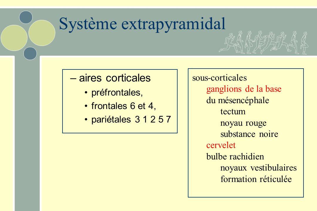 –aires corticales préfrontales, frontales 6 et 4, pariétales 3 1 2 5 7 sous-corticales ganglions de la base du mésencéphale tectum noyau rouge substance noire cervelet bulbe rachidien noyaux vestibulaires formation réticulée Système extrapyramidal