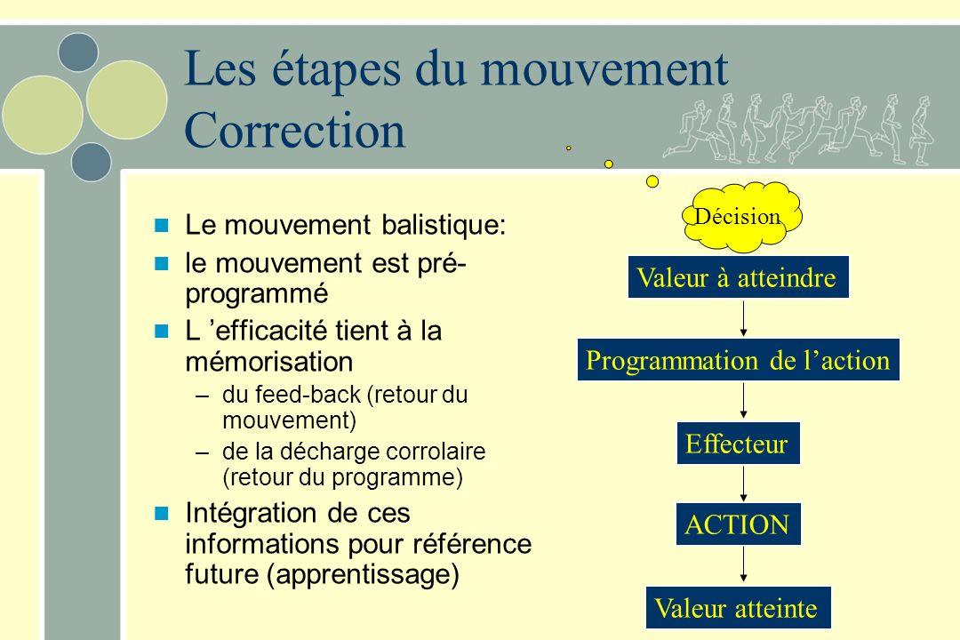 Le mouvement balistique: le mouvement est pré- programmé L efficacité tient à la mémorisation –du feed-back (retour du mouvement) –de la décharge corr