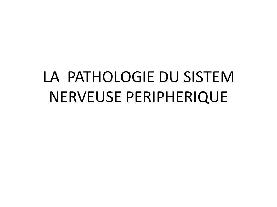 CLASSIFICATION Lorsqu un nerf est touché par un processus pathologique, il s agit d une atteinte tronculaire.