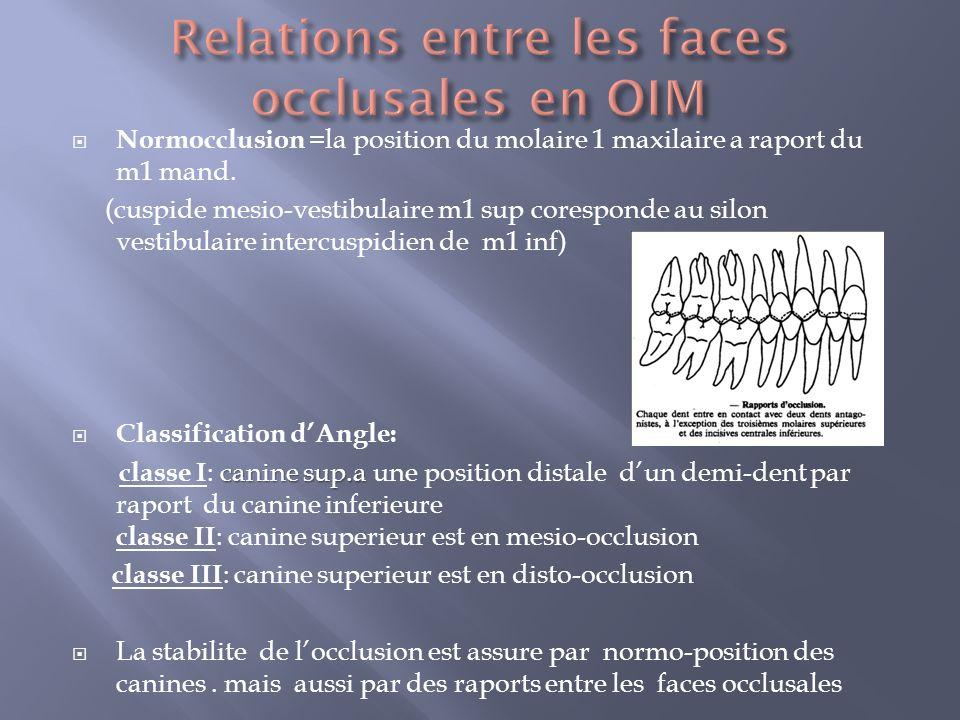 Normocclusion =la position du molaire 1 maxilaire a raport du m1 mand.