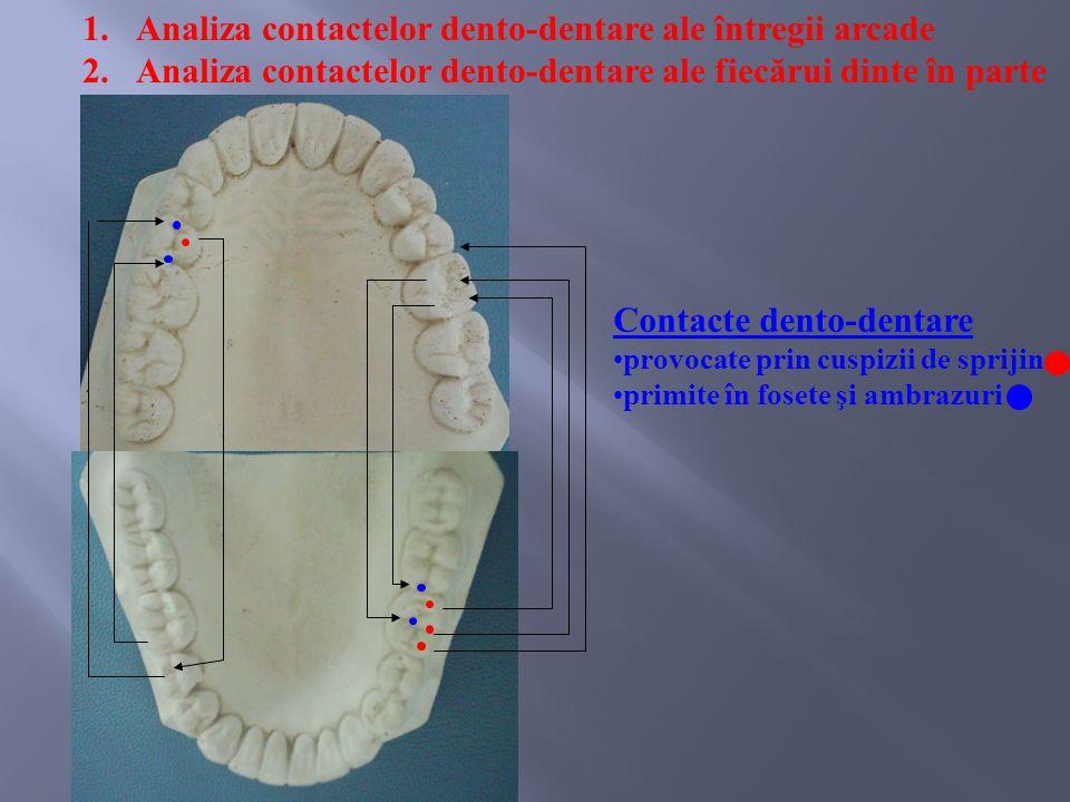 1.Analiza contactelor dento-dentare ale întregii arcade 2.Analiza contactelor dento-dentare ale fiecărui dinte în parte Contacte dento-dentare provocate prin cuspizii de sprijin primite în fosete şi ambrazuri
