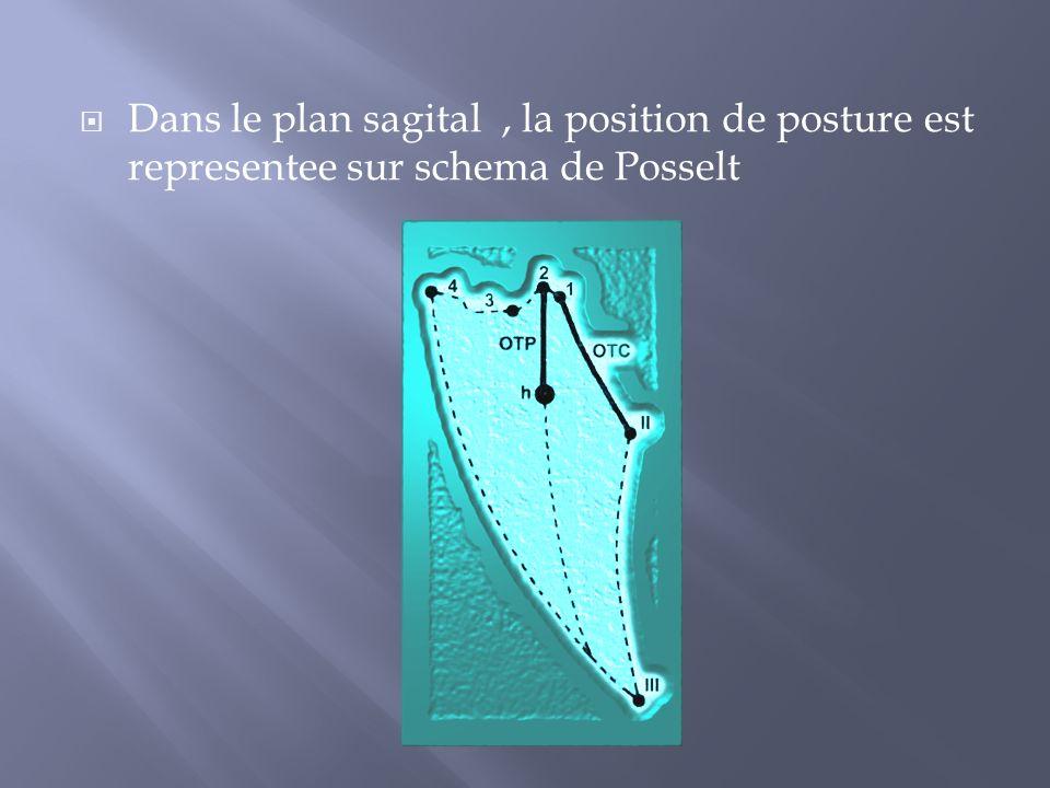 Dans le plan sagital, la position de posture est representee sur schema de Posselt