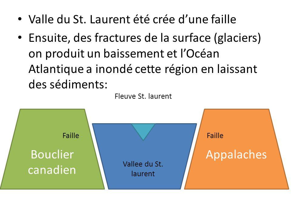 Valle du St. Laurent été crée dune faille Ensuite, des fractures de la surface (glaciers) on produit un baissement et lOcéan Atlantique a inondé cette