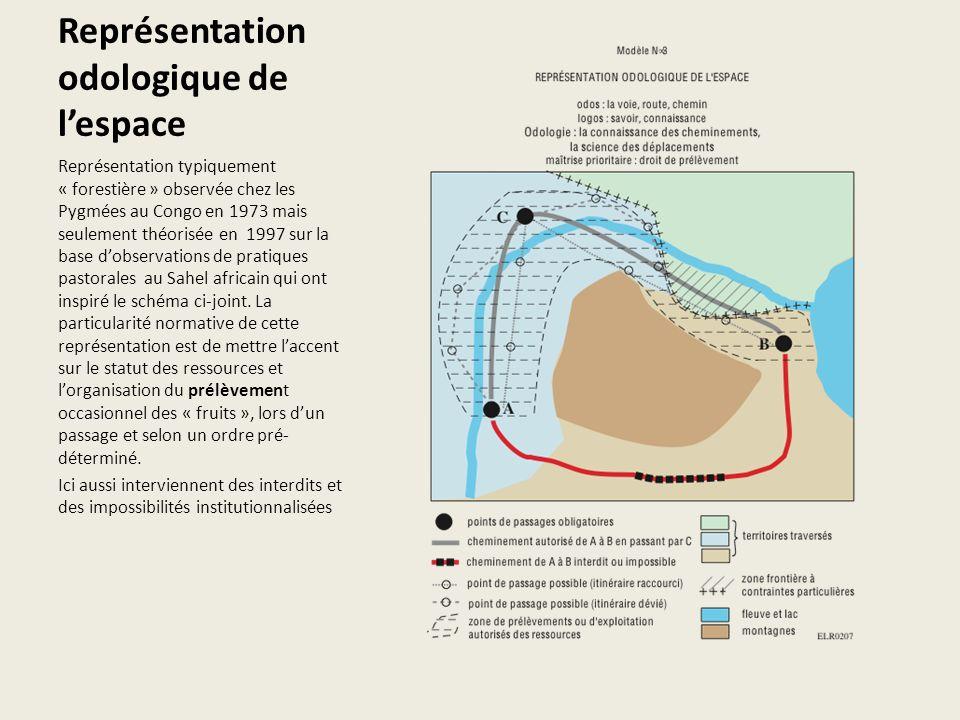 Représentation odologique de lespace Représentation typiquement « forestière » observée chez les Pygmées au Congo en 1973 mais seulement théorisée en 1997 sur la base dobservations de pratiques pastorales au Sahel africain qui ont inspiré le schéma ci-joint.