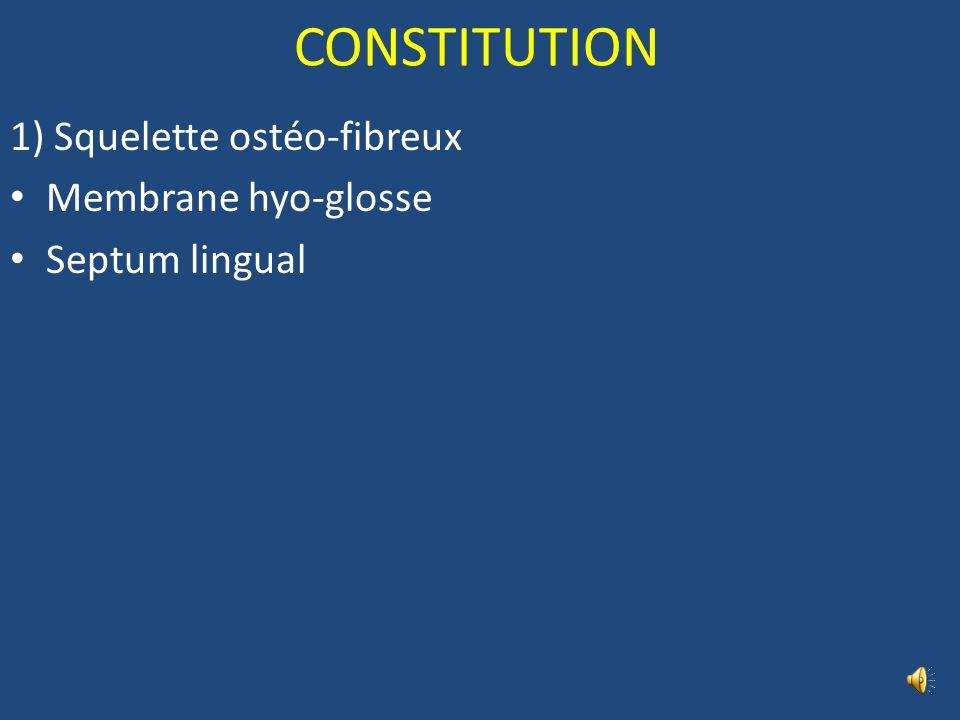 LA LANGUE Partie libre = corps Sillon médian longitudinal Sillon terminal Foramen caecum Partie fixe = racine Epiglotte Pli glosso-épiglottique médian