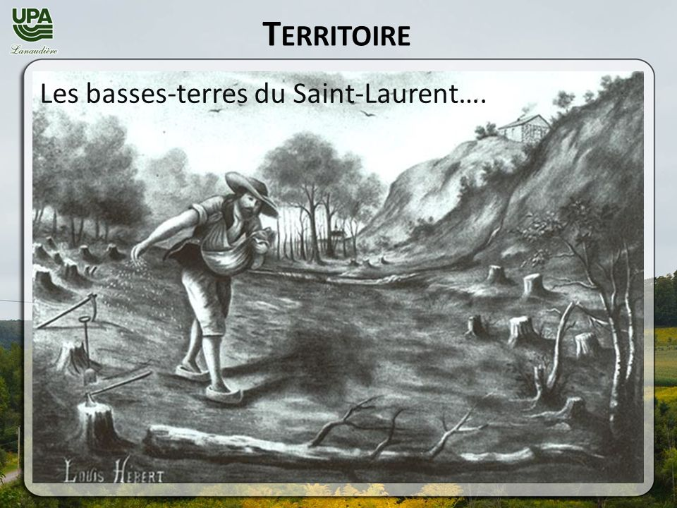 T ERRITOIRE Les basses-terres du Saint-Laurent….