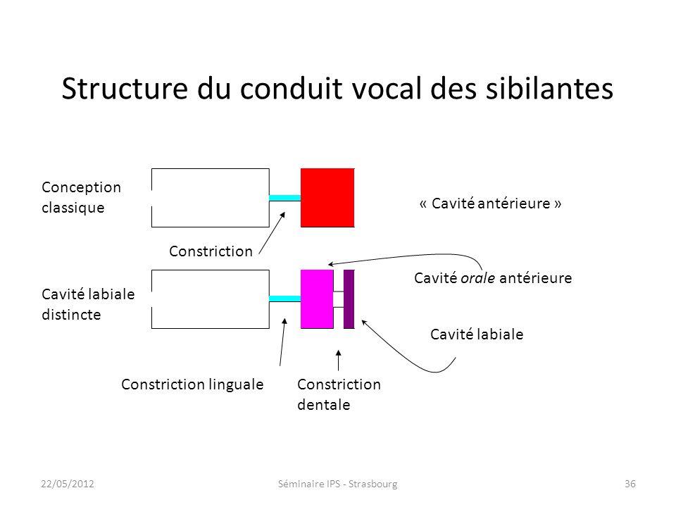 35 ssssjsj s ʃʃ ɕ s ɕ Français (n=7) Anglais (n=5) Japonais (n=9) Chinois (n=4) Polonais (n=2) Aires de constriction linguale et dentale Constriction