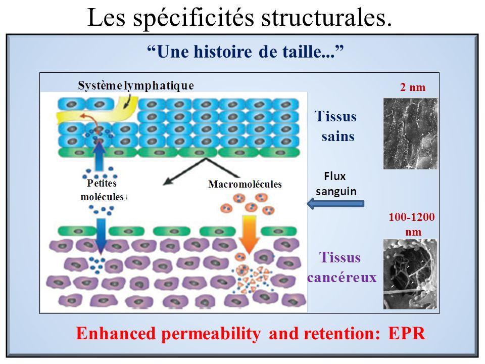 Les spécificités structurales. Enhanced permeability and retention: EPR 2 nm 100-1200 nm Une histoire de taille...