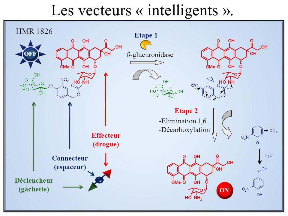 -glucuronidase -Elimination 1,6 -Décarboxylation Etape 1 Etape 2 HMR 1826 H2OH2O Connecteur (espaceur) OFF ON Déclencheur (gâchette) Effecteur (drogue