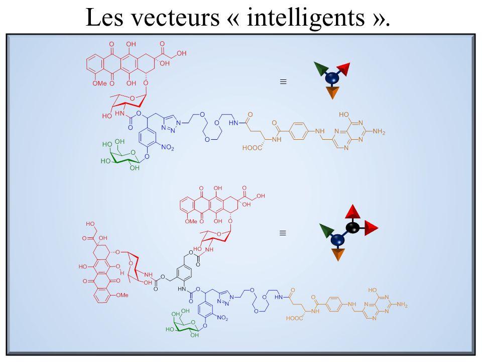 LAM (CHU Poitier) Lymphocytes Blastes Les vecteurs « intelligents ».