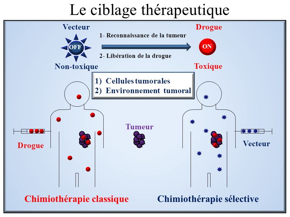 Drogue Vecteur Tumeur Chimiothérapie classiqueChimiothérapie sélective 1)Cellules tumorales 2)Environnement tumoral Le ciblage thérapeutique OFF ON 1-
