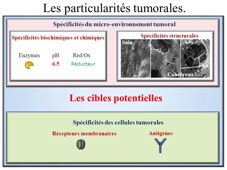 Sain Cancéreux Spécificités du micro-environnement tumoral Spécificités structurales Spécificités biochimiques et chimiques Spécificités des cellules