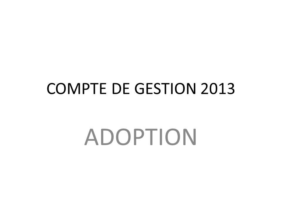 COMPTE DE GESTION 2013 ADOPTION