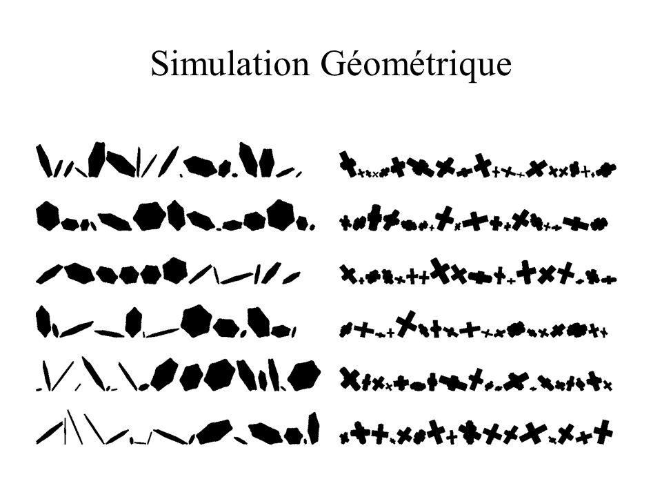 Simulation Géométrique