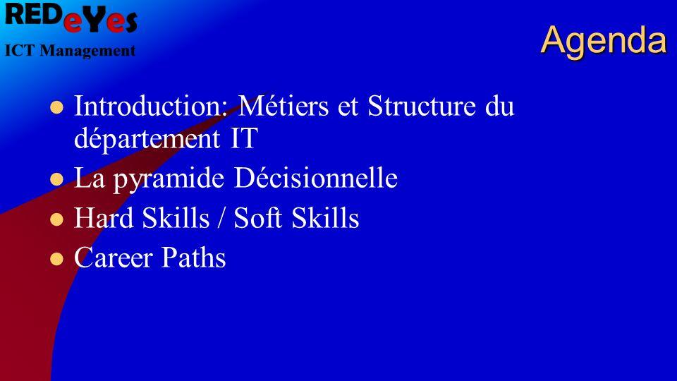 Quelle structure a, selon vous, un département IT générique.