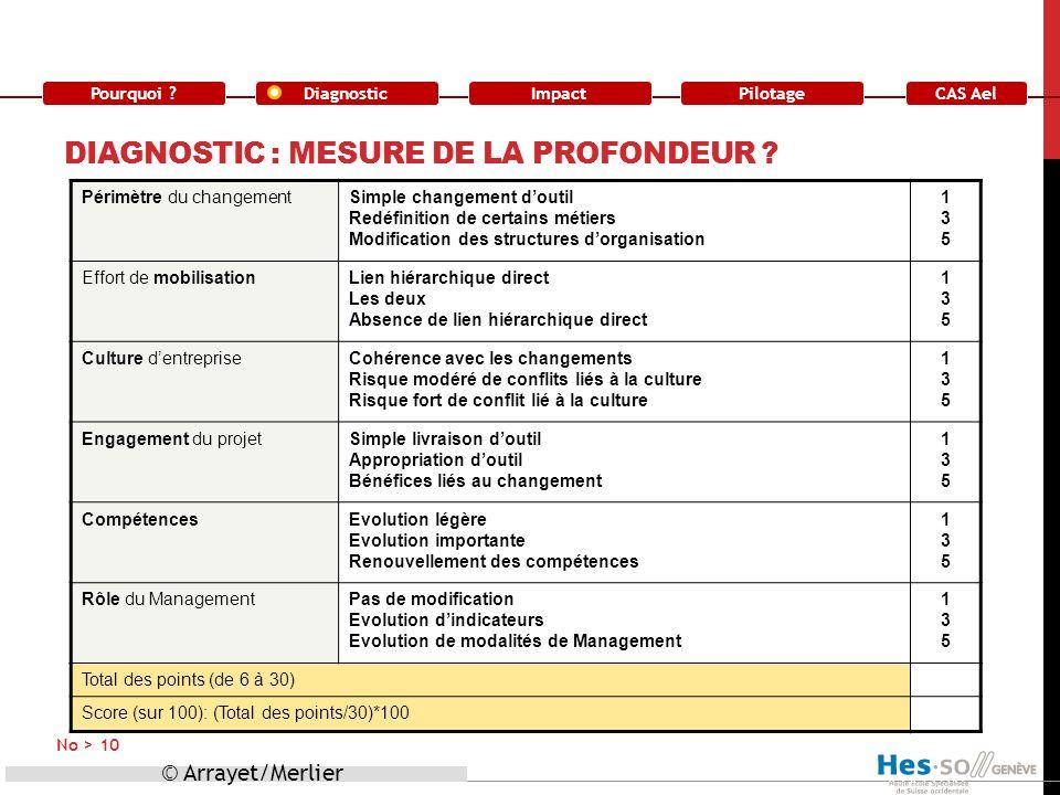 Pourquoi ?DiagnosticImpact CAS Ael Pilotage DIAGNOSTIC : MESURE DE LA PROFONDEUR ? © Arrayet/Merlier No > 10 Périmètre du changementSimple changement