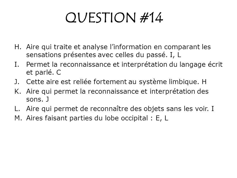 QUESTION #14 H.Aire qui traite et analyse linformation en comparant les sensations présentes avec celles du passé. I, L I.Permet la reconnaissance et