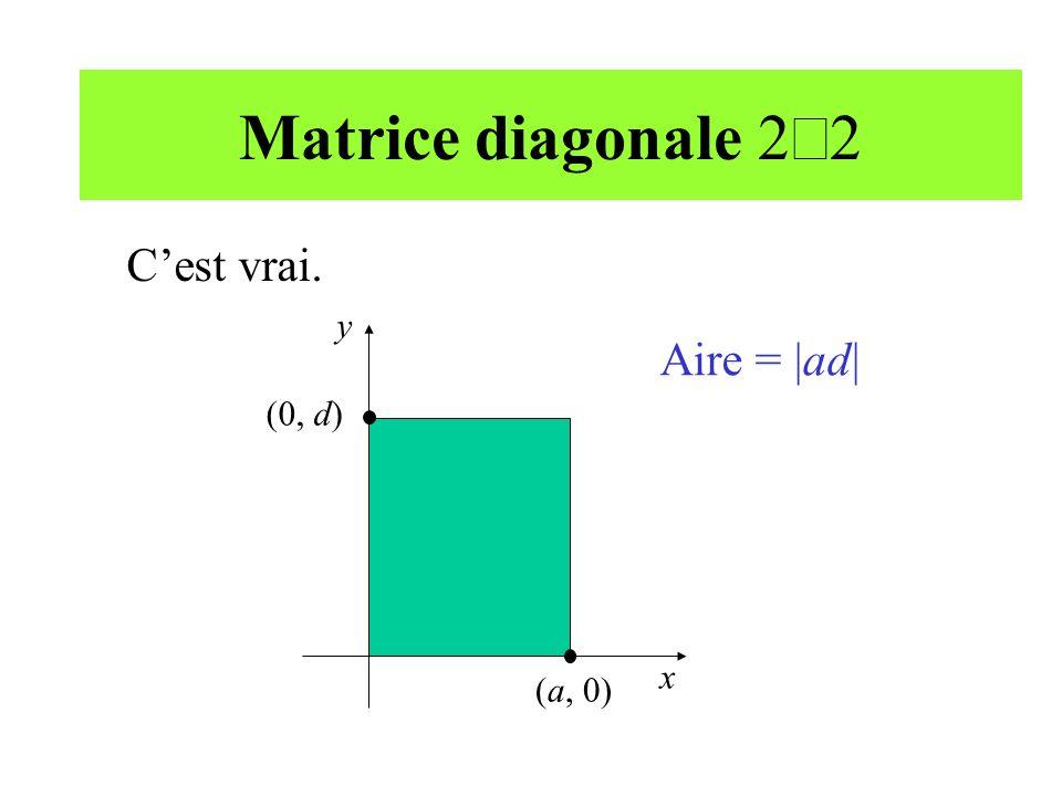 Matrice diagonale 2 2 y x (a, 0) (0, d) Aire = |ad| Cest vrai.