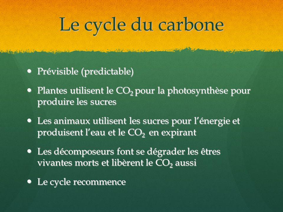 Le cycle du carbone Prévisible (predictable) Prévisible (predictable) Plantes utilisent le CO 2 pour la photosynthèse pour produire les sucres Plantes