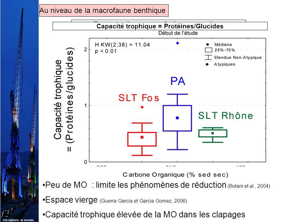 Port Autonome de Marseille Peu de MO : limite les phénomènes de réduction (Bolam et al., 2004) Espace vierge (Guerra Garcia et Garcia Gomez, 2006) Cap