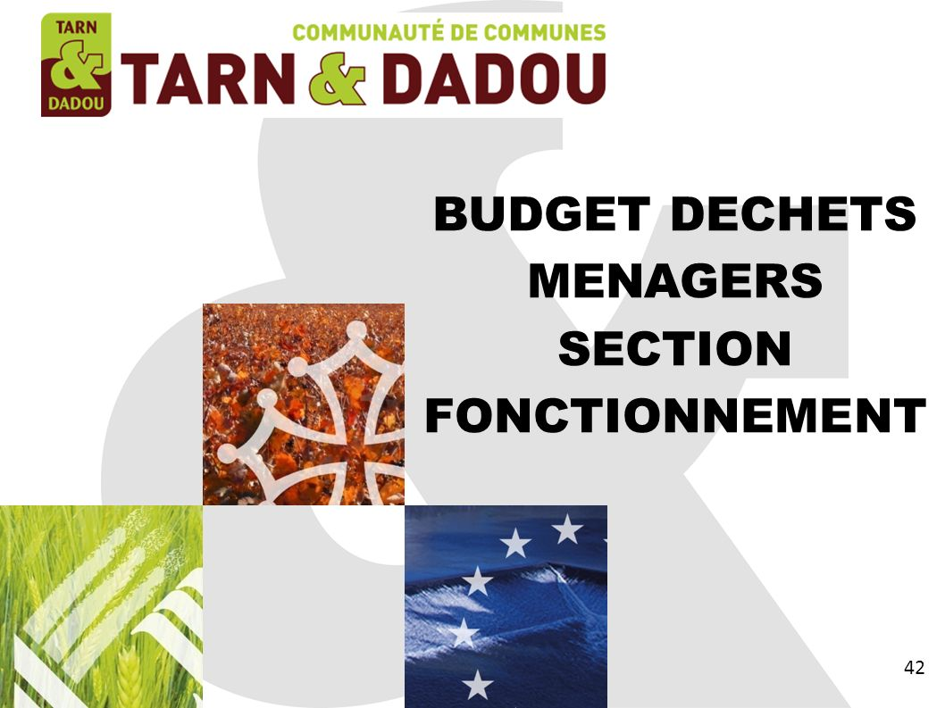 BUDGET DECHETS MENAGERS SECTION FONCTIONNEMENT 42