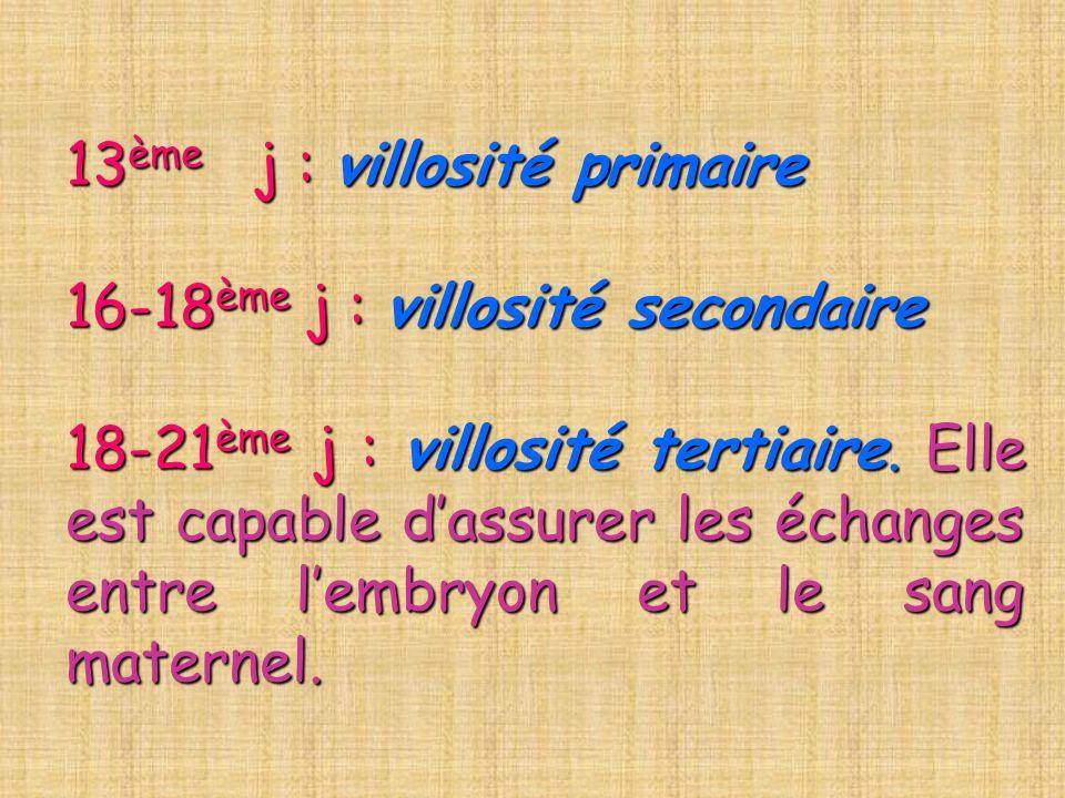 13ème j : villosité primaire 16-18ème j : villosité secondaire 18-21ème j : villosité tertiaire.