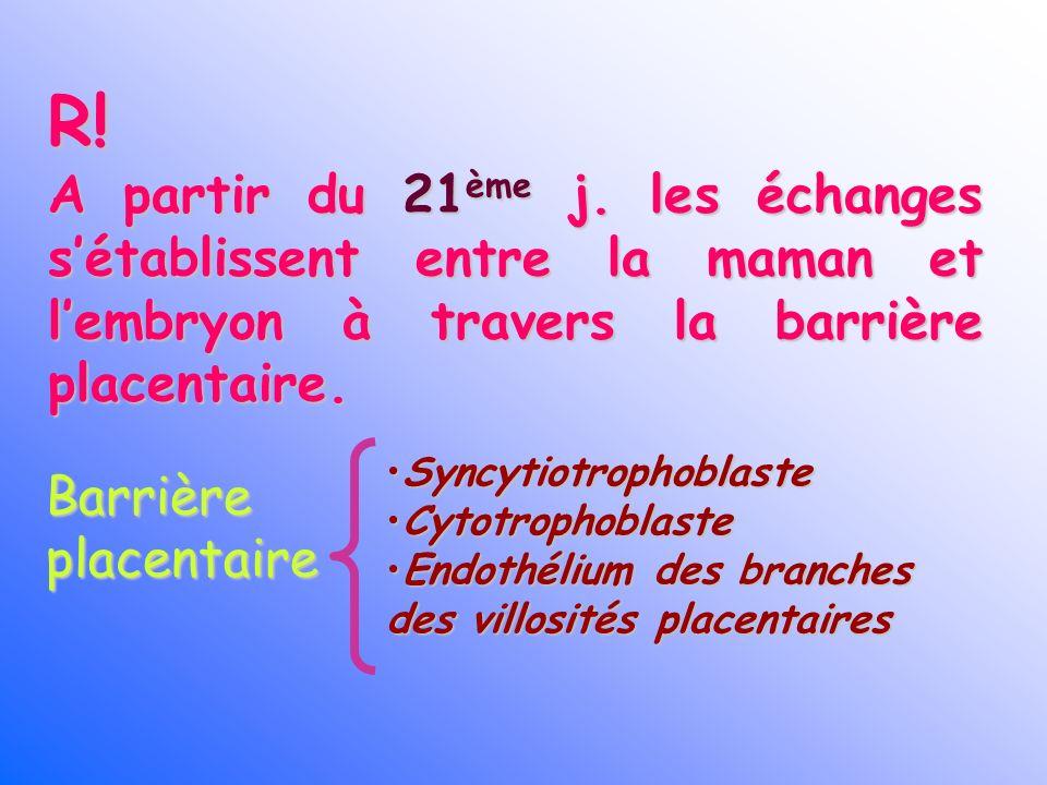 R! A partir du 21ème j. les échanges sétablissent entre la maman et lembryon à travers la barrière placentaire. Barrière placentaire Syncytiotrophobla