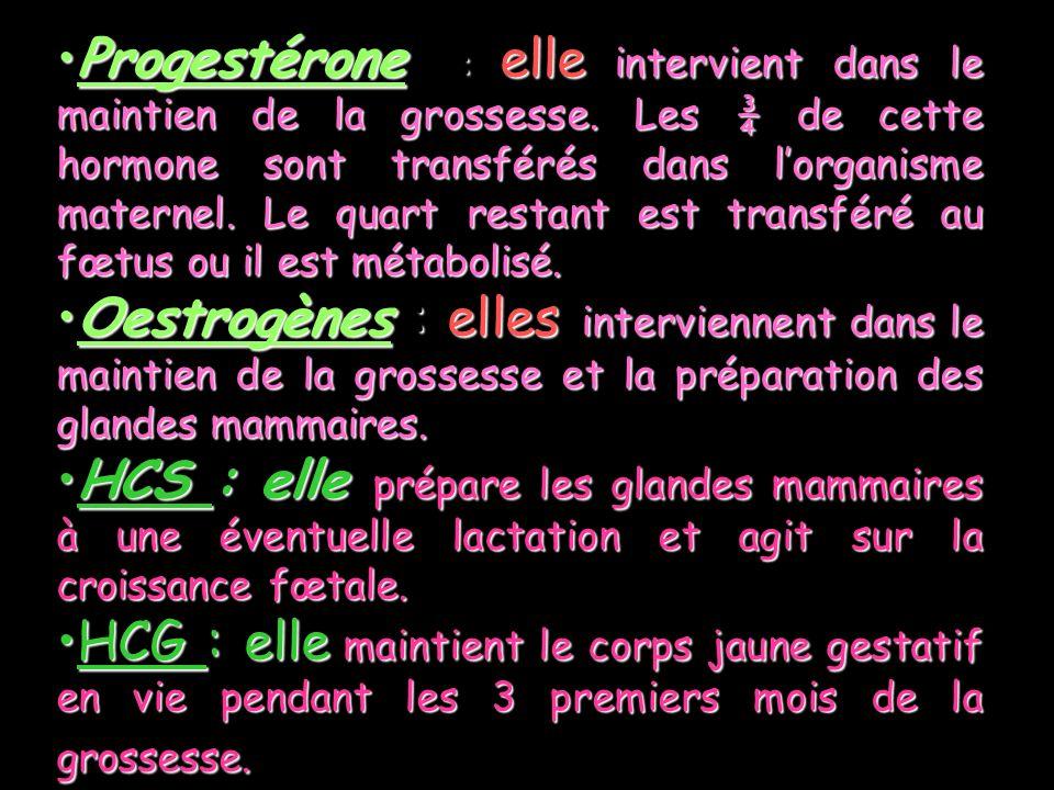 Progestérone : elle intervient dans le maintien de la grossesse. Les ¾ de cette hormone sont transférés dans lorganisme maternel. Le quart restant est