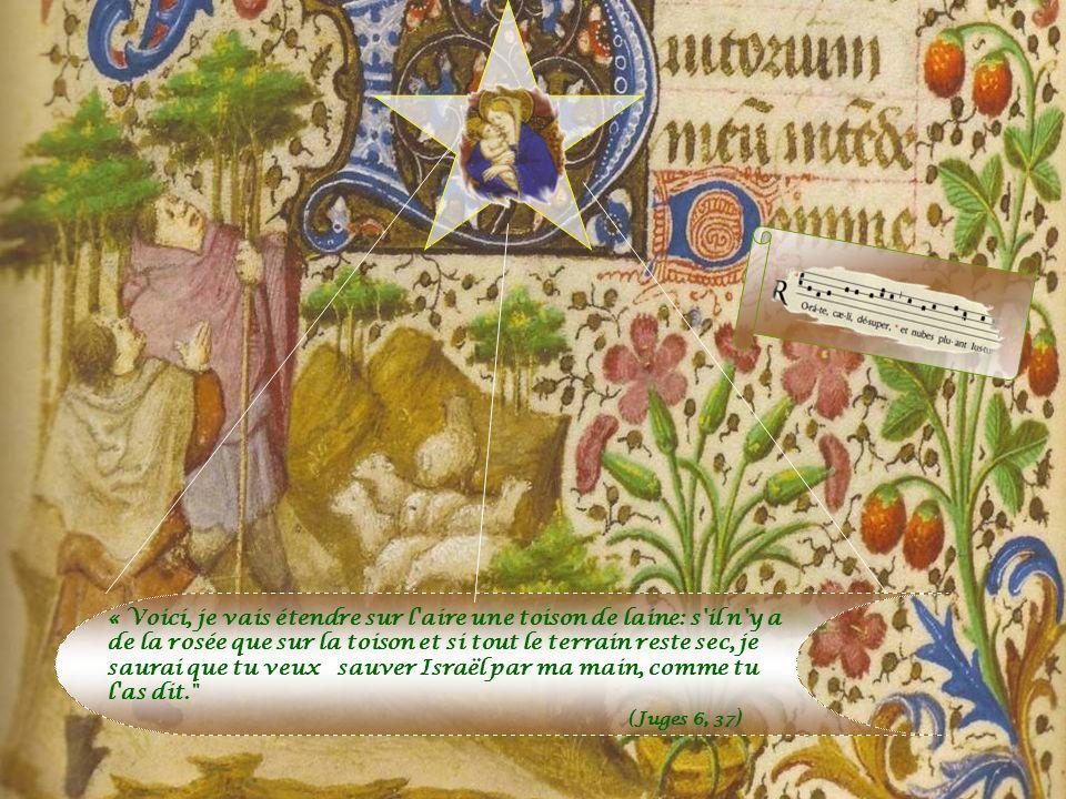 Limage dont se sert Isaïe (45, 8) rappelle la rosée mystérieuse qui descendit miraculeusement du ciel pour rafraîchir la toison de Gédéon, qui avait d