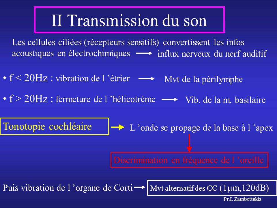 Pr.I. Zambettakis Les cellules ciliées (récepteurs sensitifs) convertissent les infos acoustiques en électrochimiques f < 20Hz : vibration de l étrier