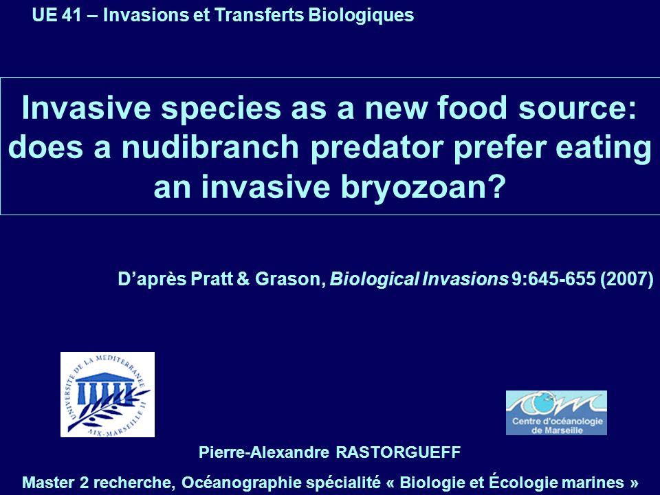 Membranipora membranacea, espèce invasive .
